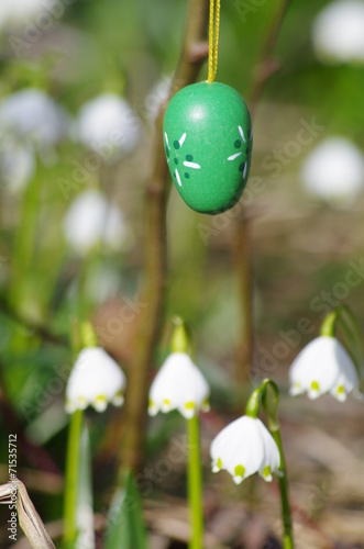 canvas print picture Easter egg meadow snowdrop snowflake