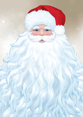 Vector of Santa  Claus with big beard.