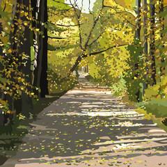 autumn leaf fall in park