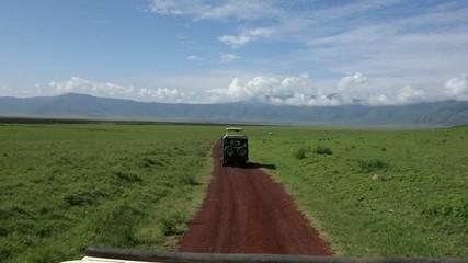 Drive Tanzani Serengeti