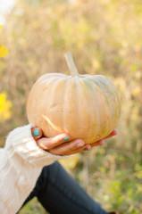 pumpkin in palms