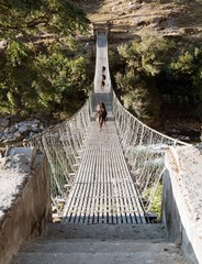 rope hanging suspension bridge with cows - Nepal