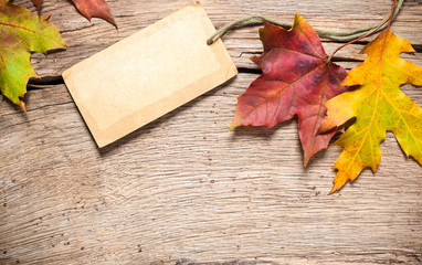 Sale tag with maple leaves
