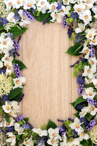canvas print picture Summer Flower Border