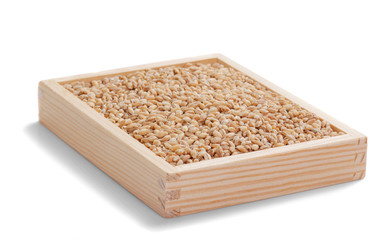 oats grains in wooden box on white