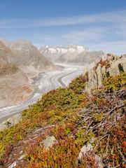 Riederalp, Dorf, Gletscher, Höhenweg, Alpen, Wallis, Schweiz