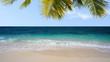 Tropical beach stock footage