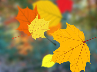 Background with falling autumn leaves