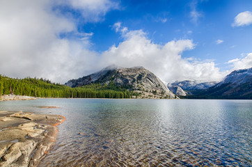 Tenaya Lake, Early Morning