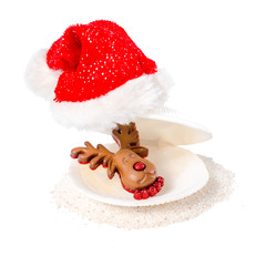 tropical concept of new year with shell, chocolate reindeer and