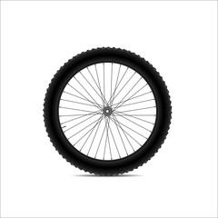 Bicycle wheel (36 spokes)