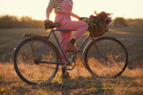Oldfashioned girl and bike at sunset poster