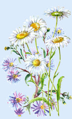 Blue flower and white daisies