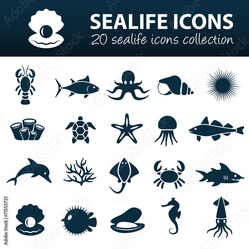 sealife icons - 71555721