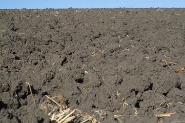 plough-land