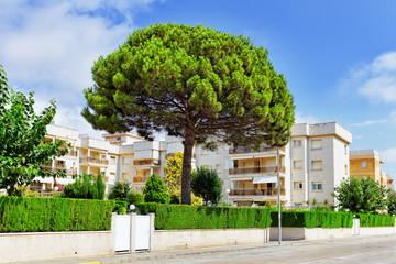 Segur fe Calafel, Costa-Dorada beach, the suburbs of Barcelona.