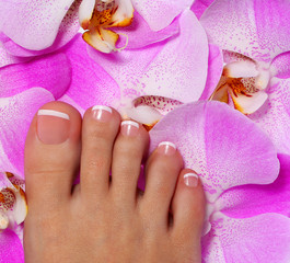 Pedicure with pink orchid flower. Beautiful female foot
