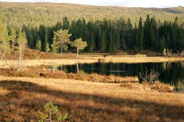 Tarn in a mountain landscape in autumn