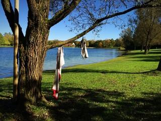 Baum dient als Kleiderständer am Badesee für Bikini