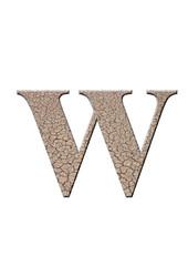 çatlaklı w harfi