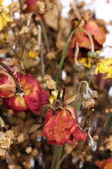 bouquet of dried withered roses