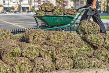 Heap of sod rolls for installing new lawn