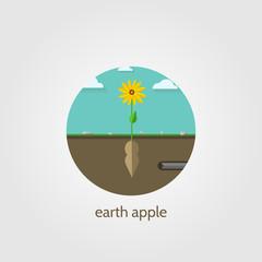 Flat icon for Jerusalem artichoke