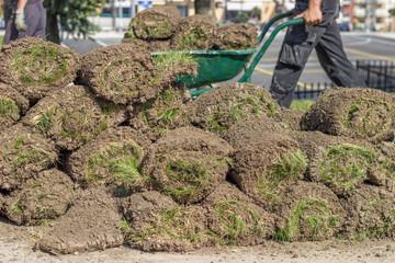 Heap of sod rolls for installing new lawn 2