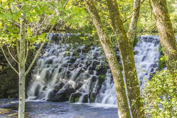 Beautiful waterfall in the trees