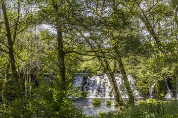 Beautiful waterfall in the vegetation