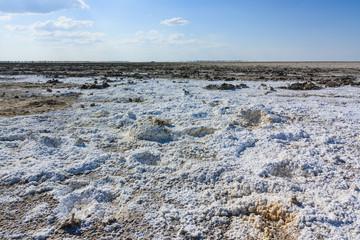 Endless salt pan Botswana, Kubu Island, Africa