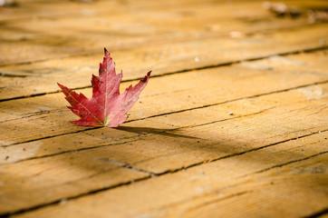 Red leaf on wood