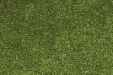 Seamless green grass background under the sunlight