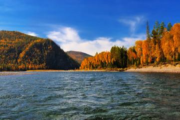 River riffle autumn day