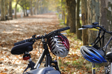 bicycles in autumn time