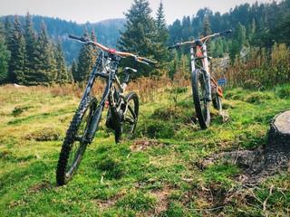 Biciclette da downhill