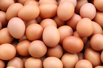 fresh eggs for sale at a market
