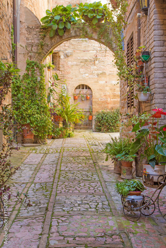 Street with stone arch decorated with plants (Spello)