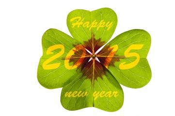 Kleeblatt zu Neujahr 2015