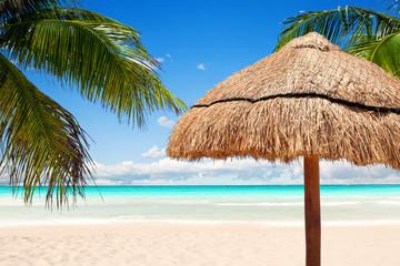 Caribbean beach of transparent water