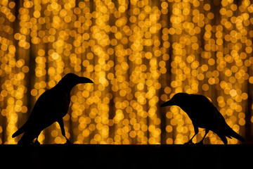 Silhouette crow with festive blur bokeh elegant abstract backgro