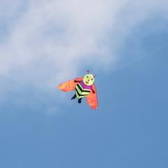 Kite flying - bee