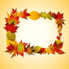 Cadre automne feuilles
