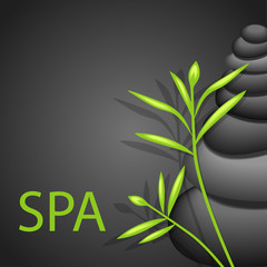 spa beauté zen bambou pierre