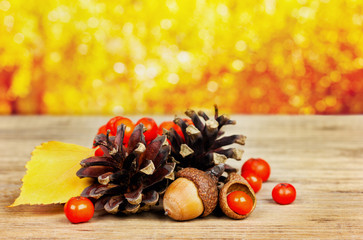 pine cones, oak acorn and rowanberry