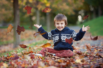 Young boy, throwing leaves in the park