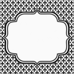 Black and White Fleur De Lis Pattern Textured Fabric with Embroi