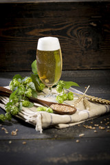 Bier, Hopfen & Malz, Studio