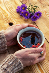 hands with a mug autumn fruit tea