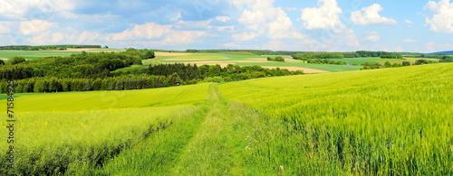 Canvas Cultuur grüne Frühlingslandschaft Panorama